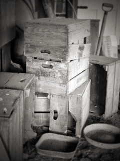 Old wine crates.......WHY? | by *sarah b*