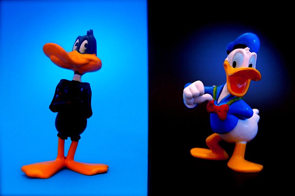 daffy duck vs donald duck 173 365 daffy duck crazy ta flickr