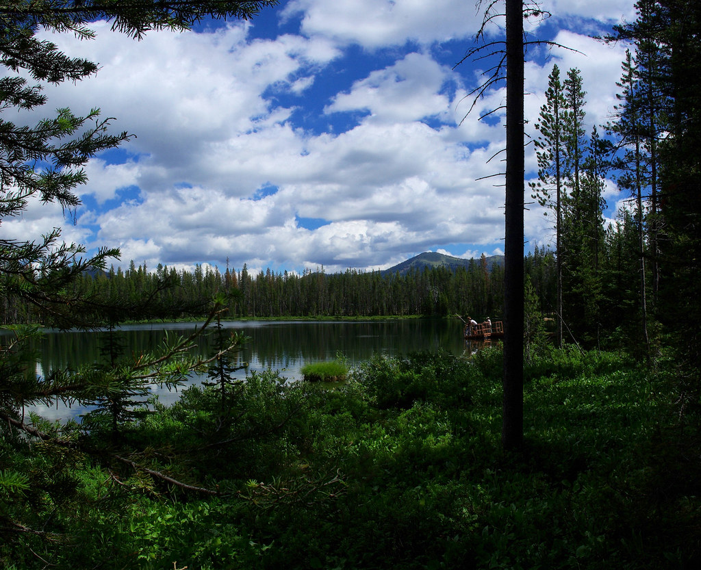 Martin Lake Next To Bull Trout Campground Idaho July 27 Flickr
