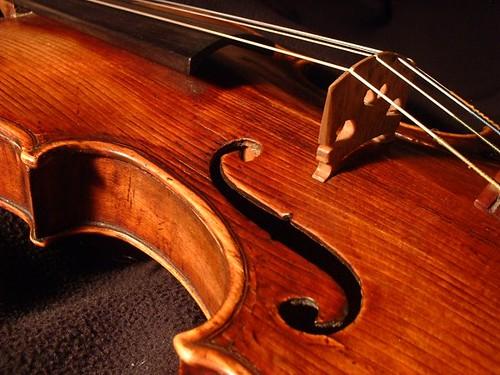 Image result for violin