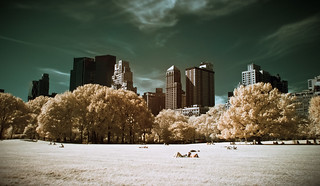 The Central Park in Infrared | by Werner Kunz