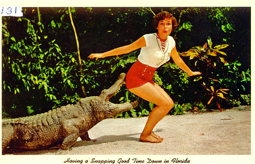 Alligator & Model, Florida, 1950s | by StevenM_61