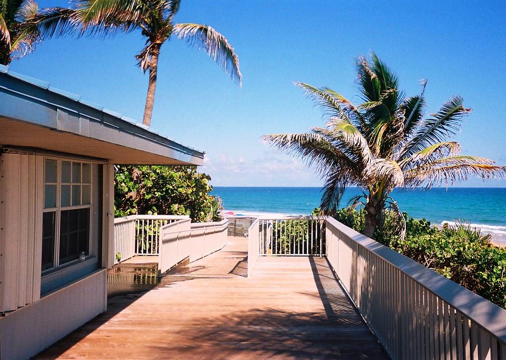 Great ... Ocean Ridge Hammock Park, Florida | By Scape Pics