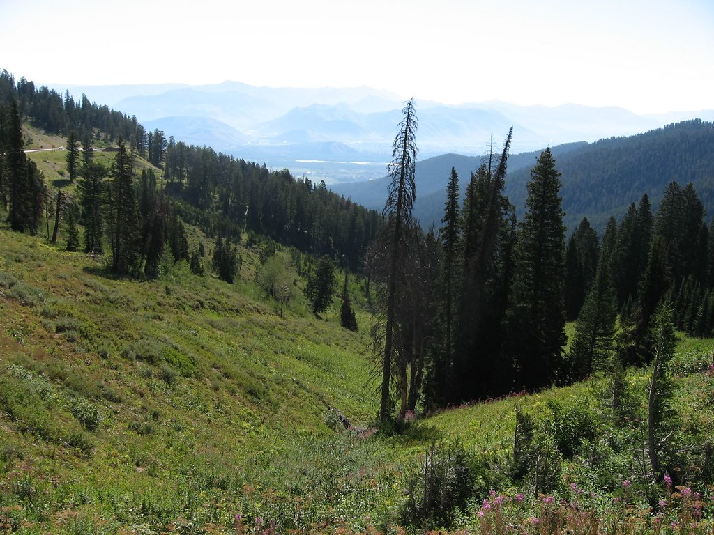 Image result for teton pass