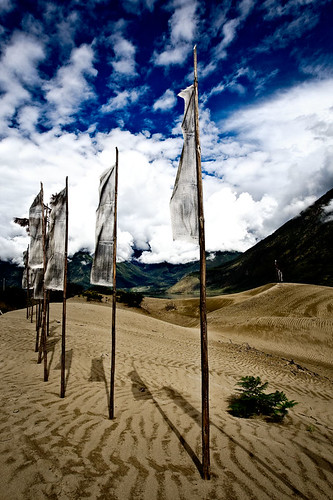 flags on a sand dune | by phitar