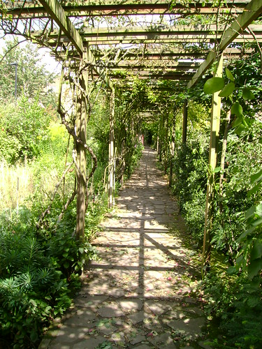 Pergola | by London Permaculture