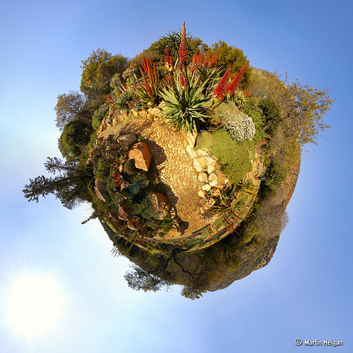 Botanical Garden Tiny Planet (Stereographic) | by Martin_Heigan