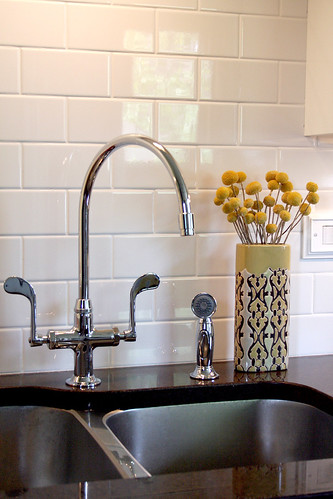 The faucet and backsplash | by Nicole Balch