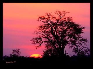 Botswana sunset Botswana