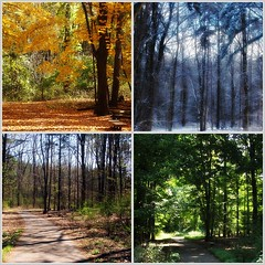 Four Seasons - Fenner Nature Center | by Aunt Owwee