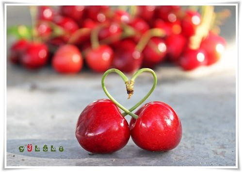 love & cherry! :) | by g ü L â L e