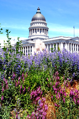 capitol | by Bobbi_Jean