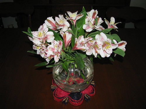 Cheap Flowers And Food Delivery New York