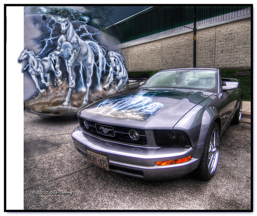 Pony car | by Bill Strong