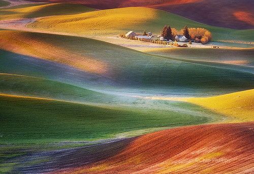Frosty Morning-Palouse | by Chip Phillips