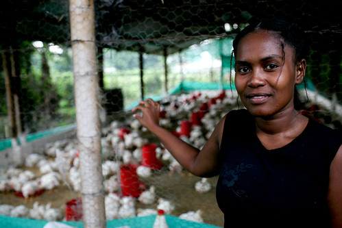 Raising poultry in Colombia | by World Bank Photo Collection