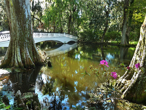 Magnolia Plantation | by Muffet