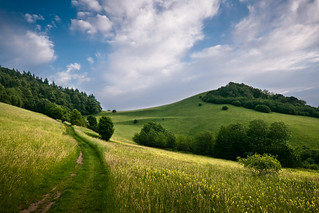 Summer Hills | by andywon