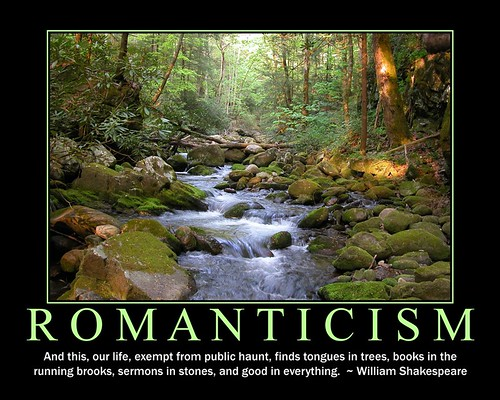 Romanticism Literature In The Scarlet Letter