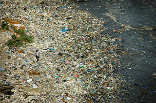 fake plastic beach | by Shreyans Bhansali