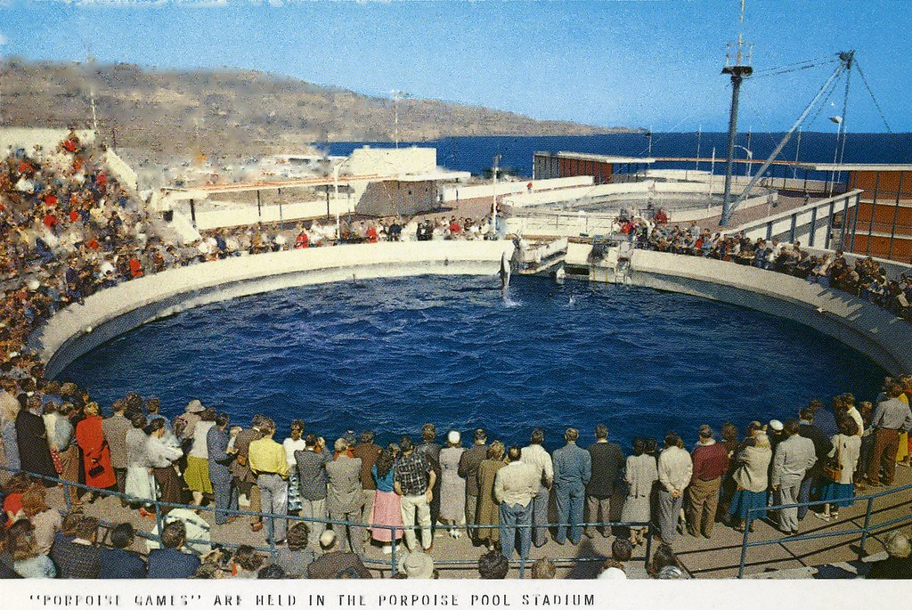 Marineland of The Pacific Postcards | Flickr