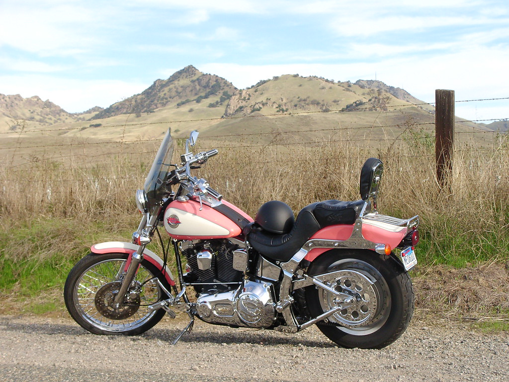 92 Harley Softail Custom