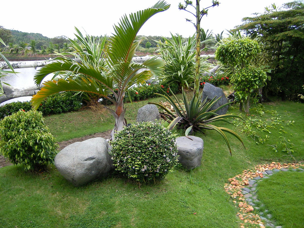 Garden design philippines homelife 10 best plants for for Landscaping plants in the philippines