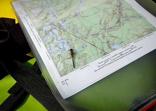 My Personal Navigation Assistant | by Mountain Visions