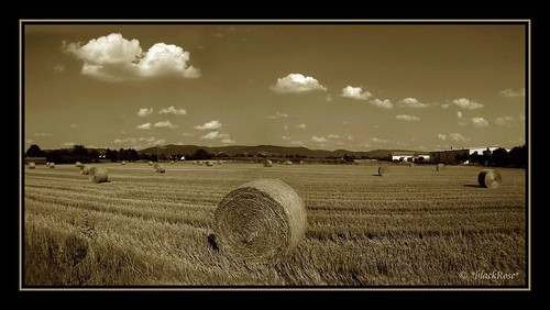 bale of straw... | by *blackRose*