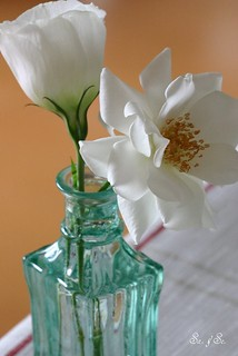 White flowers in a green bottle | by Sa&Se.