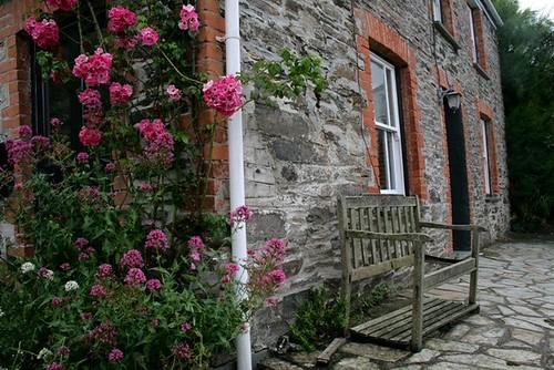 Doc Martin S Fern Cottage Port Isaac Quot Port Wenn Quot Cornwall