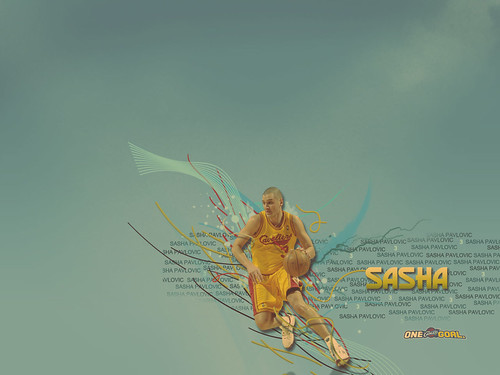 2008-2009 Wallpaper Sasha | by Cavs History