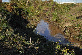 Bread and Cheese Creek between Plainfield Rd and Merritt Blvd. after the 11/6/10 cleanup | by Clean Bread and Cheese Creek