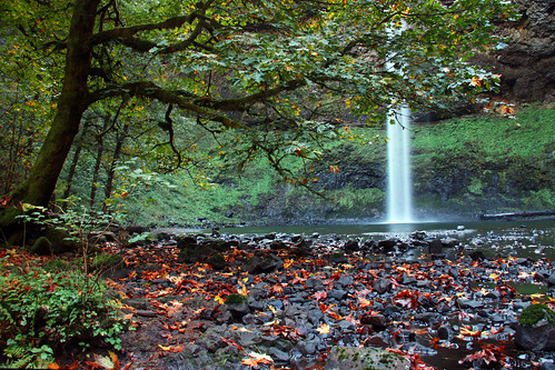 Silver Falls, South Falls | by William (tectum macula) Walsh