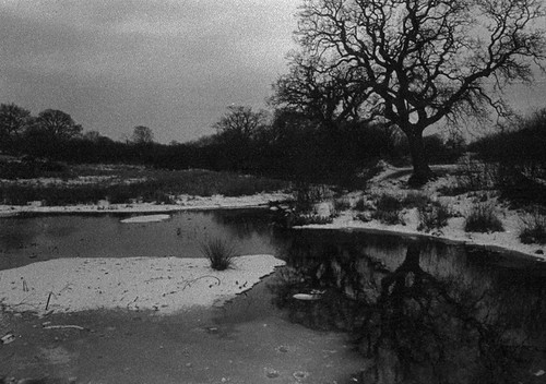 Kinson Common -COLD! | by VolVal