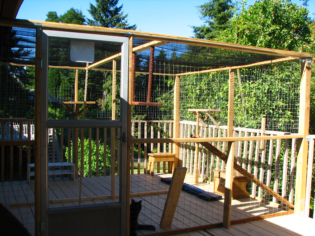 "Our Outdoor Cat Enclosure. A Room to Roam. The ""Catararium ..."