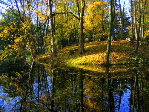 Autumn reflections | by halina-anna