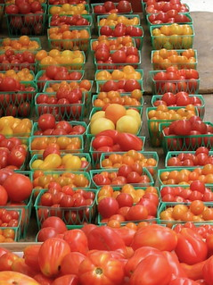 tomatoes | by mercedes l.