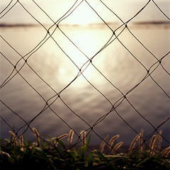 *The other side of the fence | by *6261
