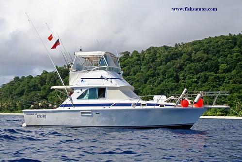 Pure indulgence in tafahi troppo samoa our beautifull for Pure fishing jobs