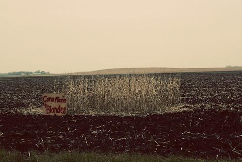 Corn Maze 4 Blondes | Outside of Marshall, Minn. | Drew ...