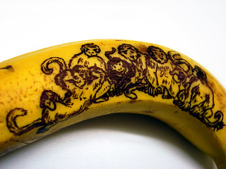 Monkeys on a Banana | by Furryscaly