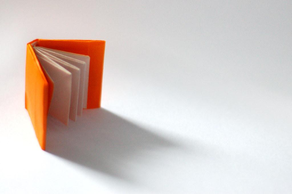 30 ouvrages pour la 9e dition du prix orange du livre. Black Bedroom Furniture Sets. Home Design Ideas