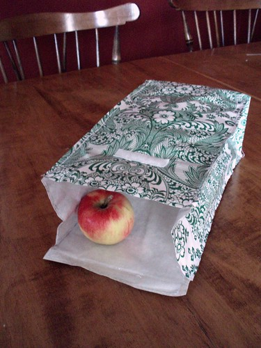 Oilcloth lunchbag w/ apple | by cold bright day