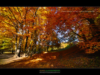'Dreamy Beautiful Fall Day' - Munich, Bavaria, Germany | by ►Klaus Allmannsberger Photography