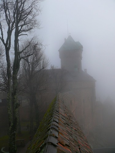 Haut-Koenigsbourg castle in the fog | by dynamosquito