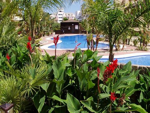 Bahia Fenicia  Sterne Hotel Spanien