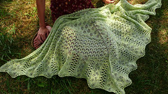 Bee Fields Shawl | by knitspot