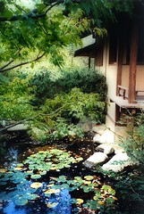 Anderson Japanese Gardens Rockford Il Lyle Flickr