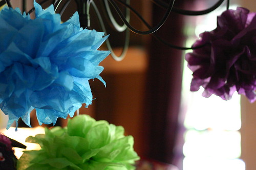 Tissue Paper Flowers. | by MelissaS